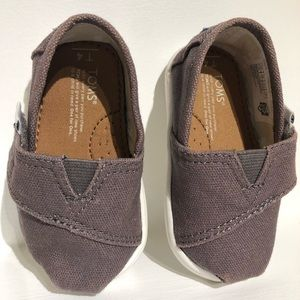 Baby Toms Classic Slip on shoes in Ash, Size 4